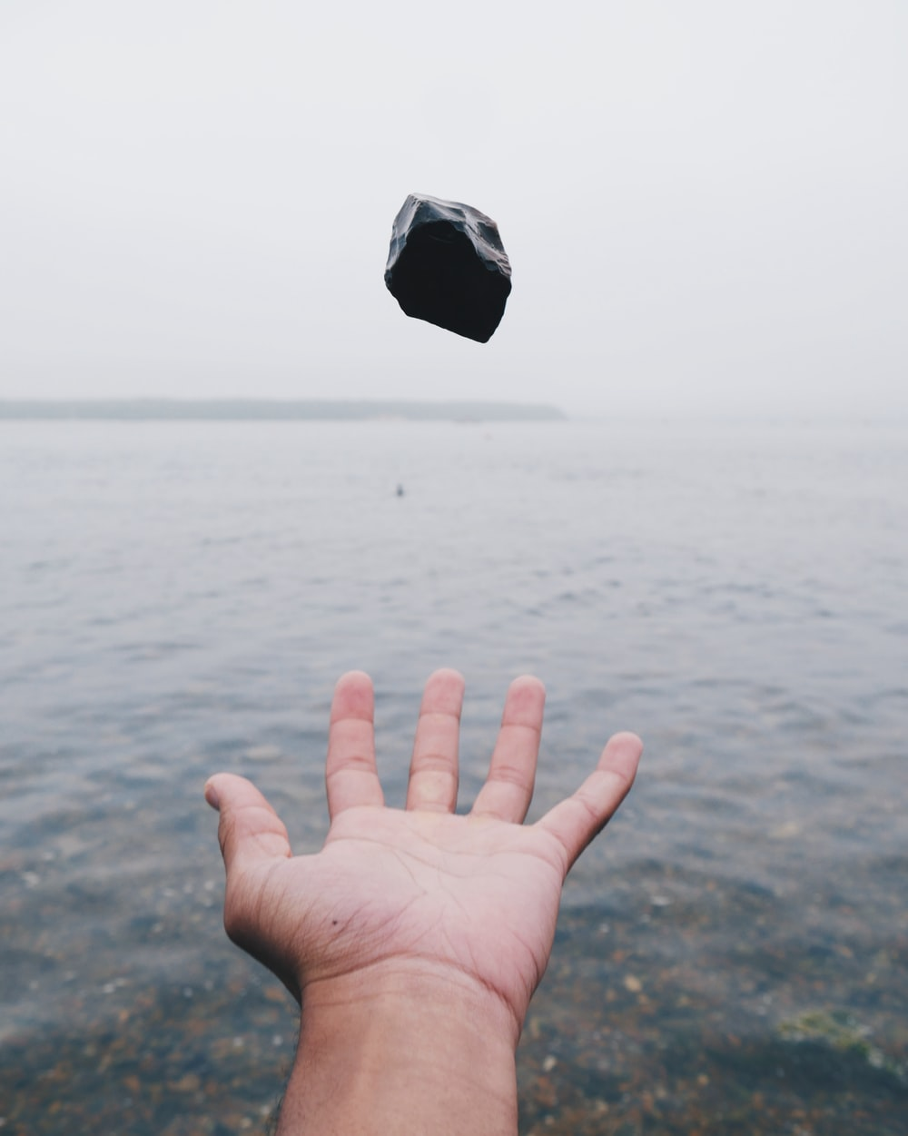 person throwing black stone on water