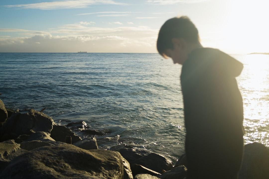 Boy exploring the shore