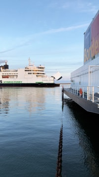 white cruise ship near dock