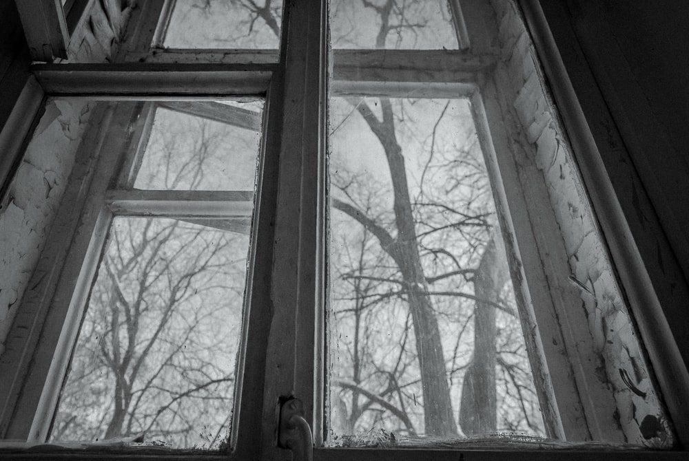 grayscale photography of window beyond trees