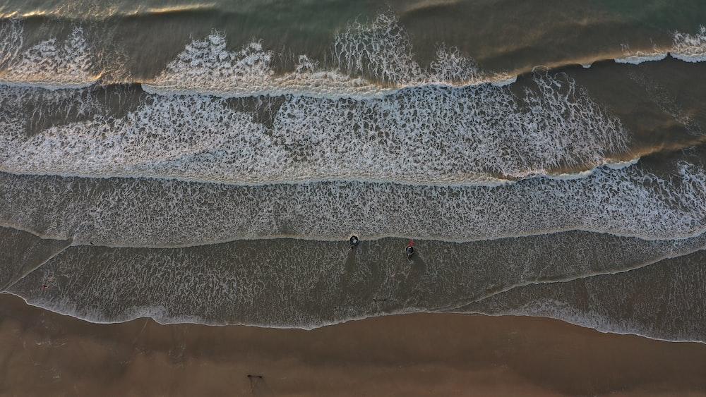 bird's-eye view photography of beach