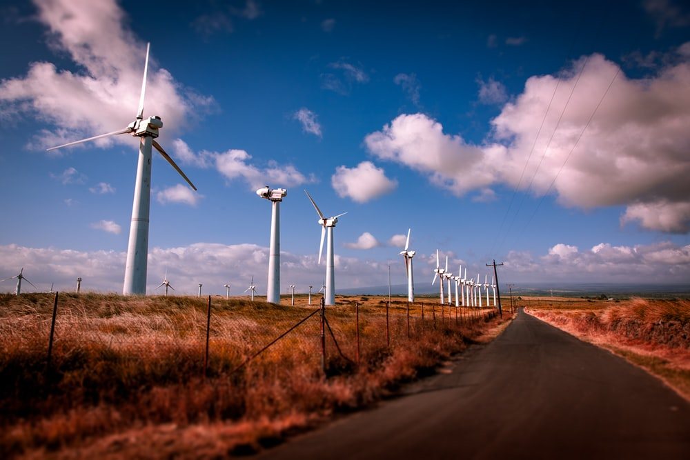 windmills beside road