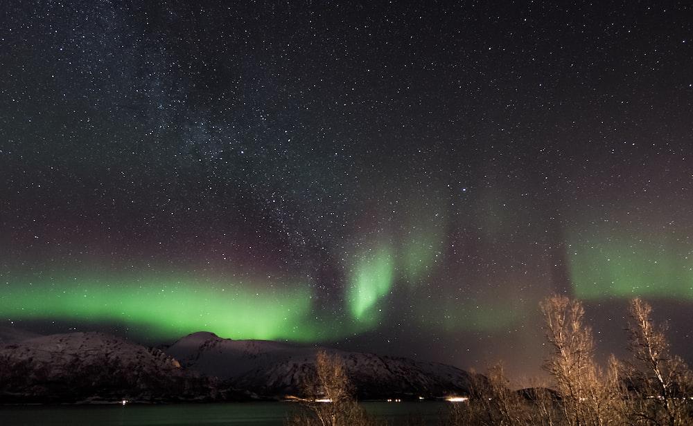 borealis sky