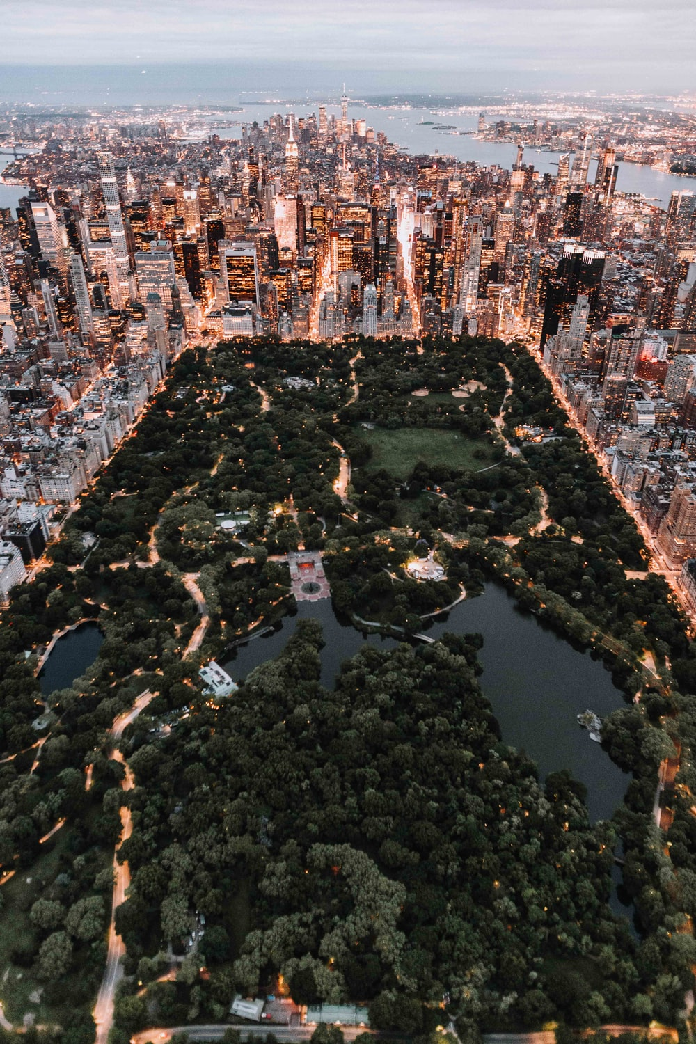 aerial view photography of city skyline