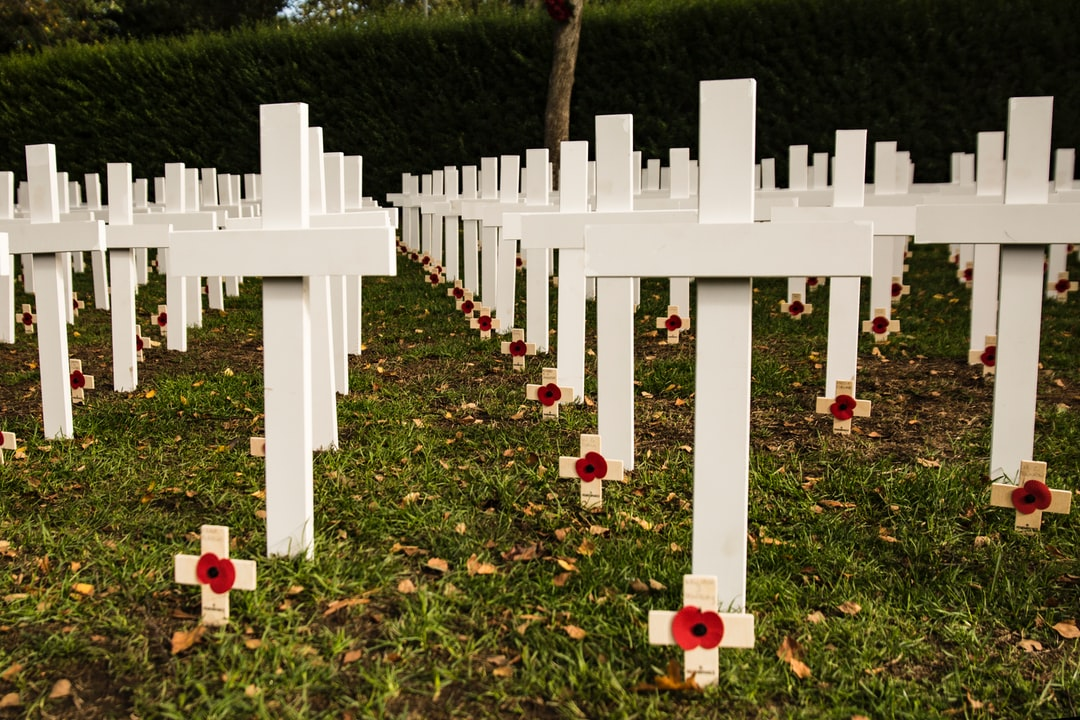 Remembrance crosses in my town in England.