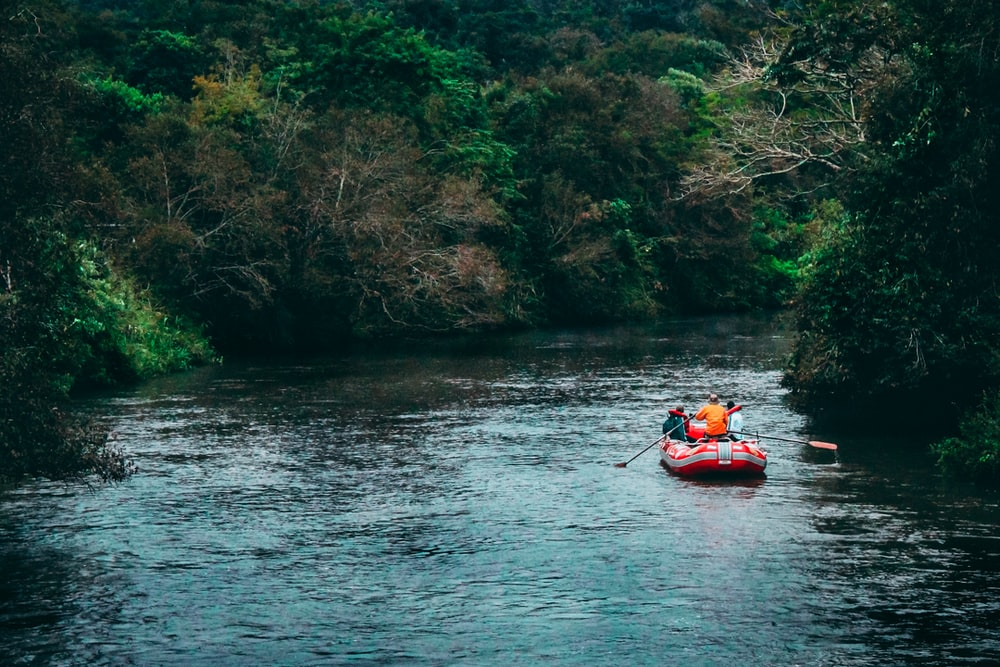 people riding raft at the river near trees