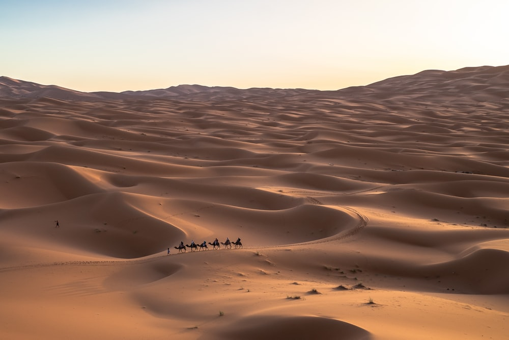six persons riding camels on desert