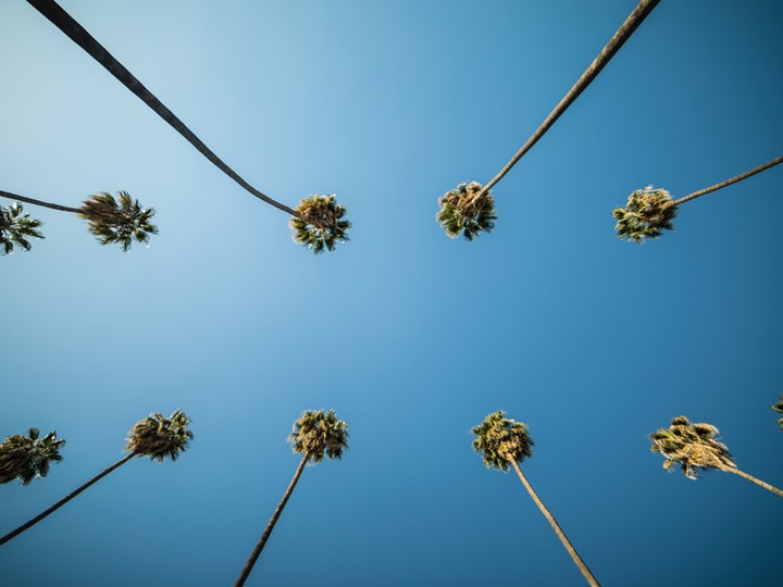 Do These Top MUST DO Things In LA!