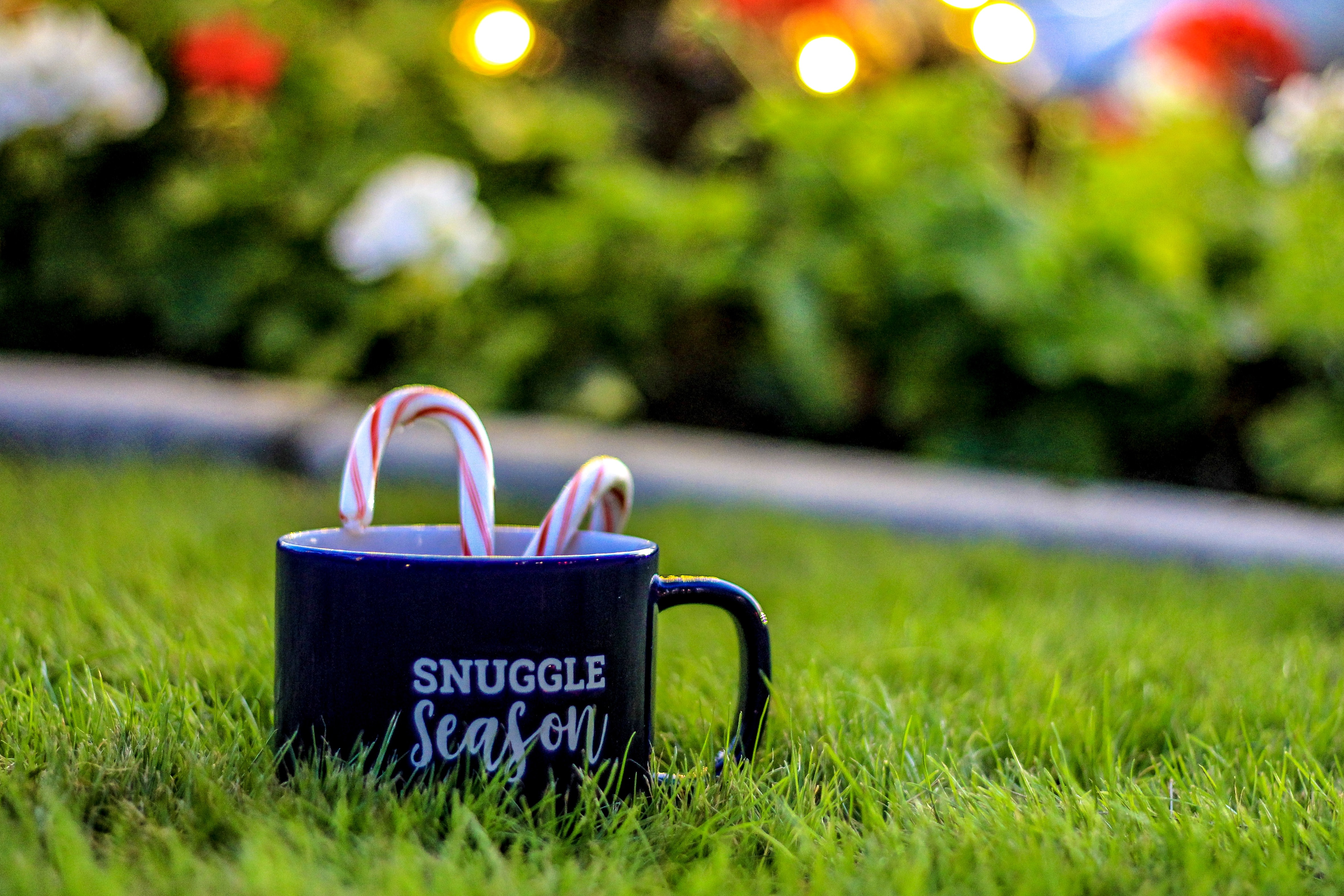 two candy canes in black ceramic coffee mug