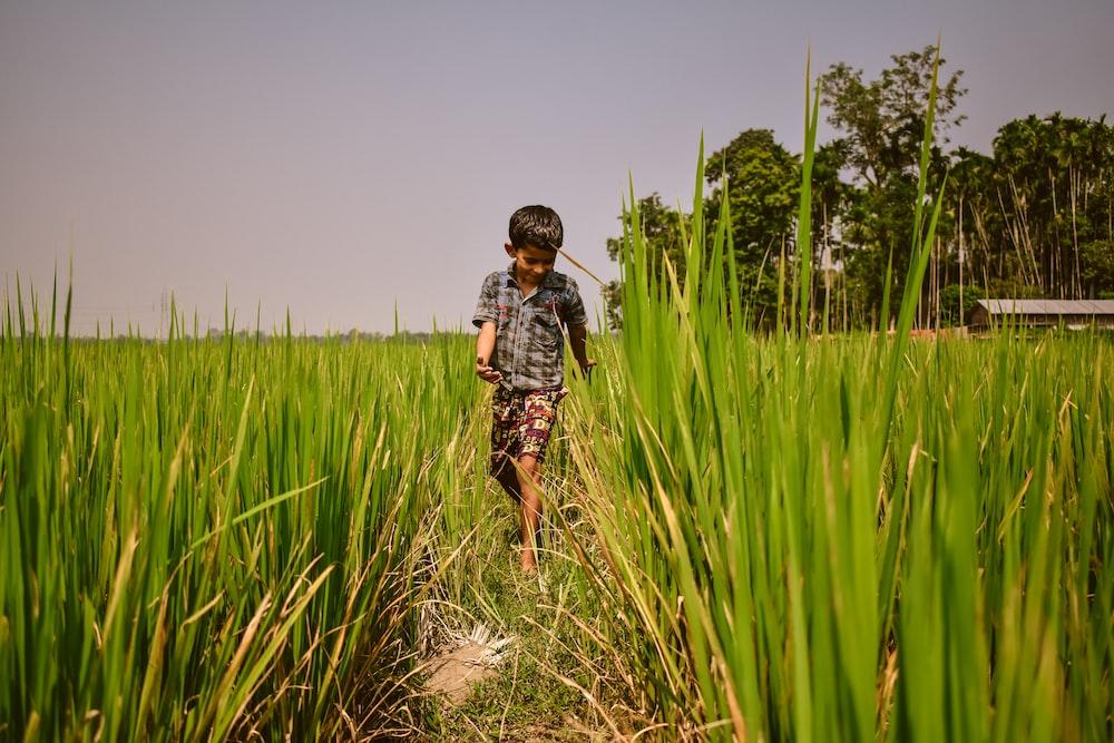 boy wearing grey plaid shirt walking on the grass field