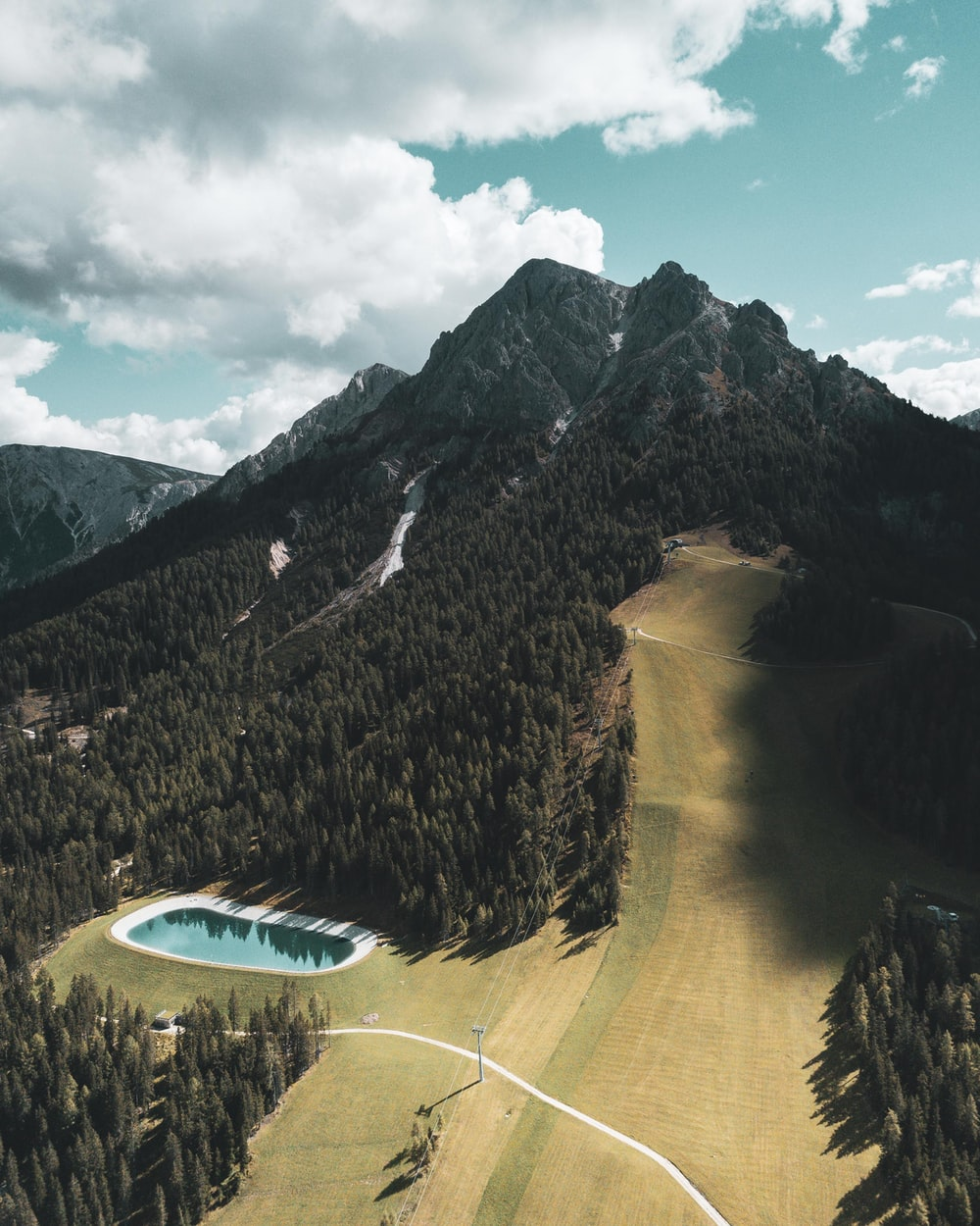 aerial photography of trees and mountain during daytime