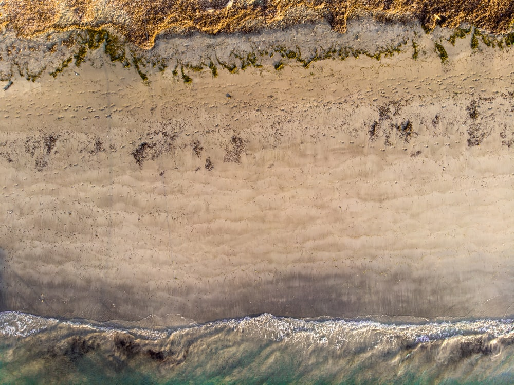 aerial photography of shore during daytime