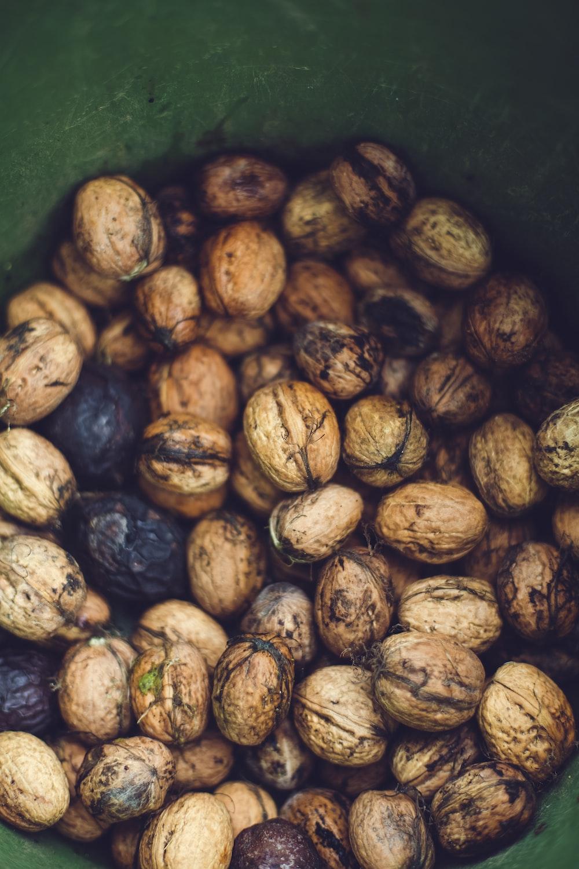 chestnuts in green bucket