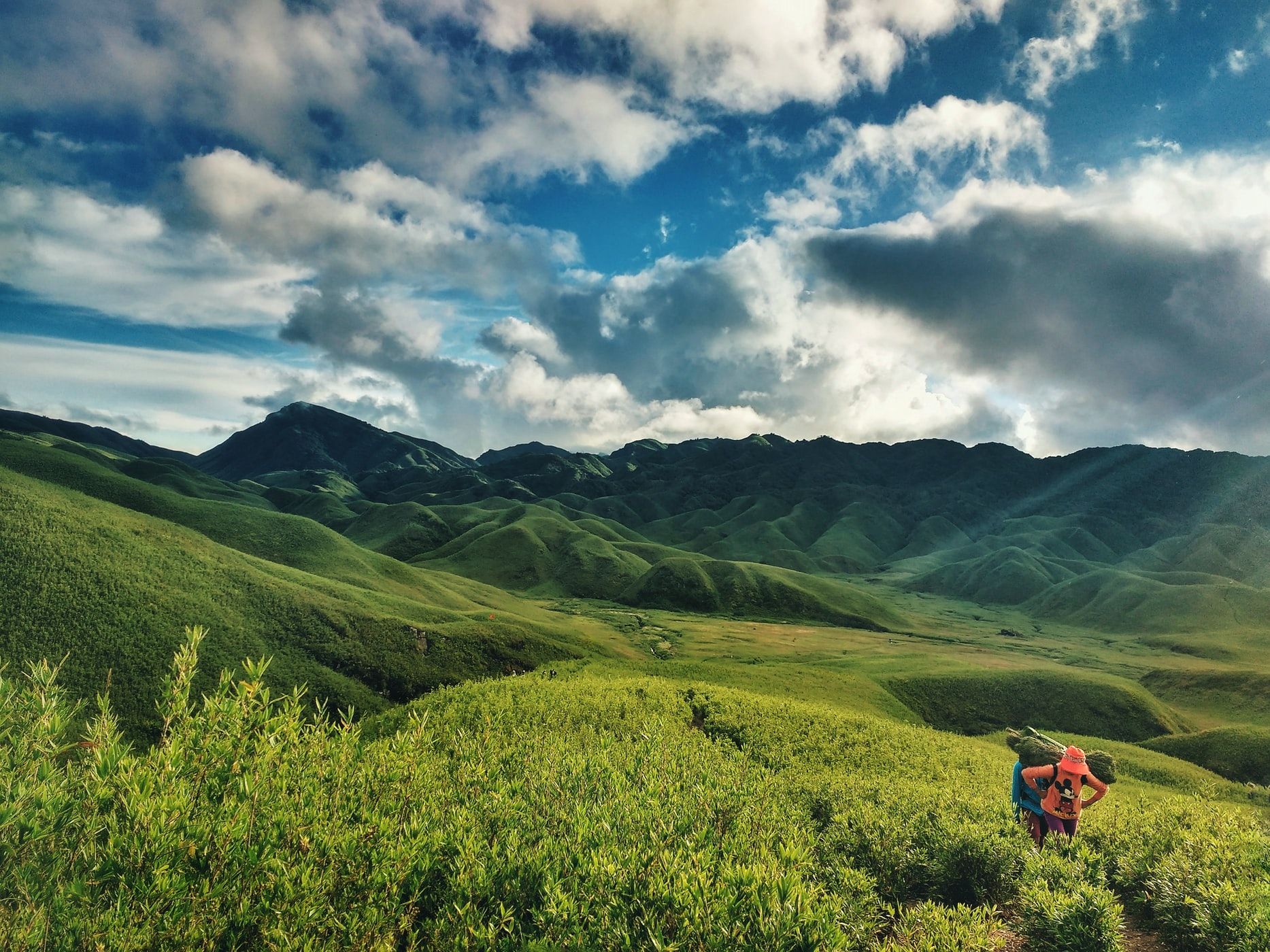 Views of the Dzükou valley, on the borders of Nagaland and Manipur
