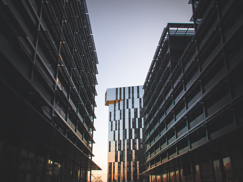 low angle photography of concrete buildings during golden hour