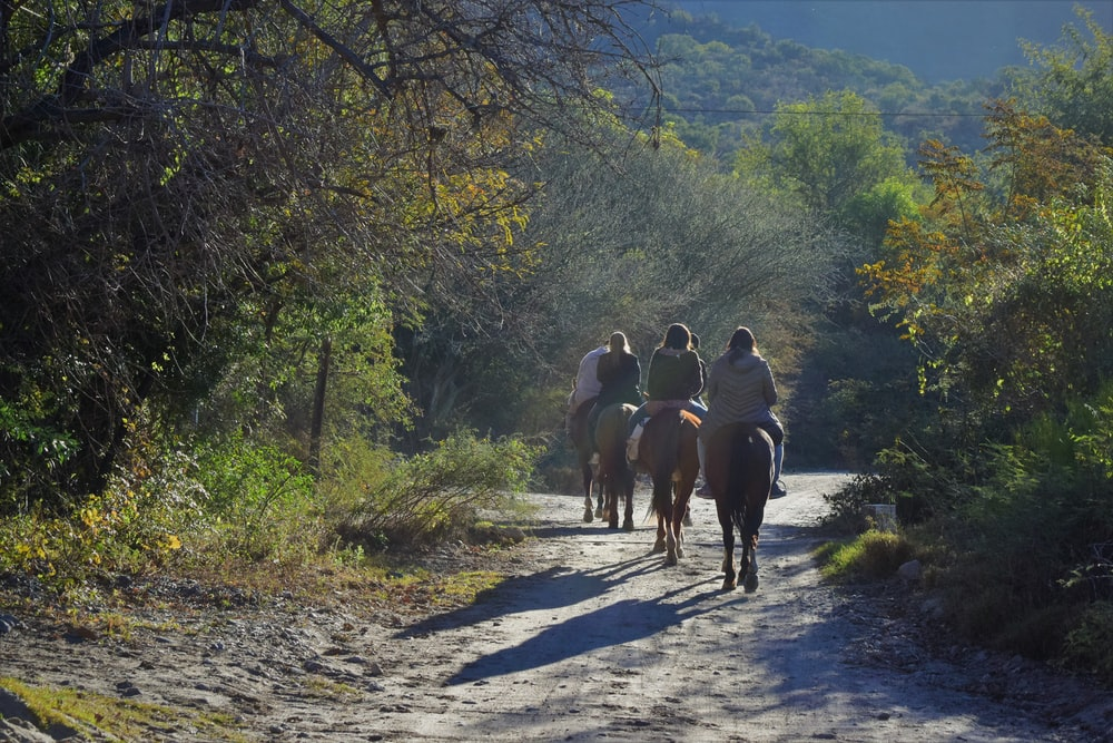 three person riding horse