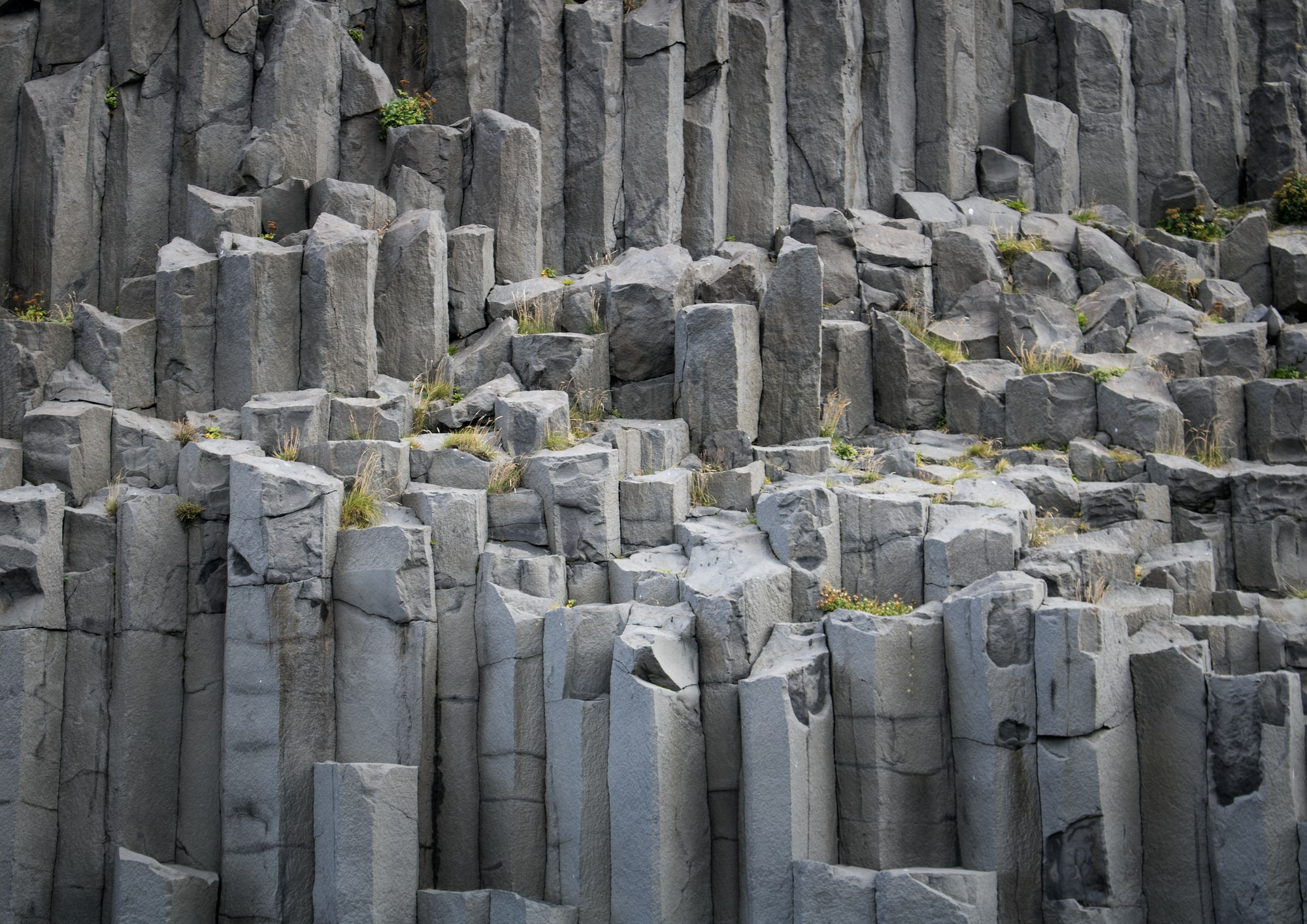 Few things make a cooler backdrop than columnar basalt. Shortly after this picture was taken I definitely climbed up there.
