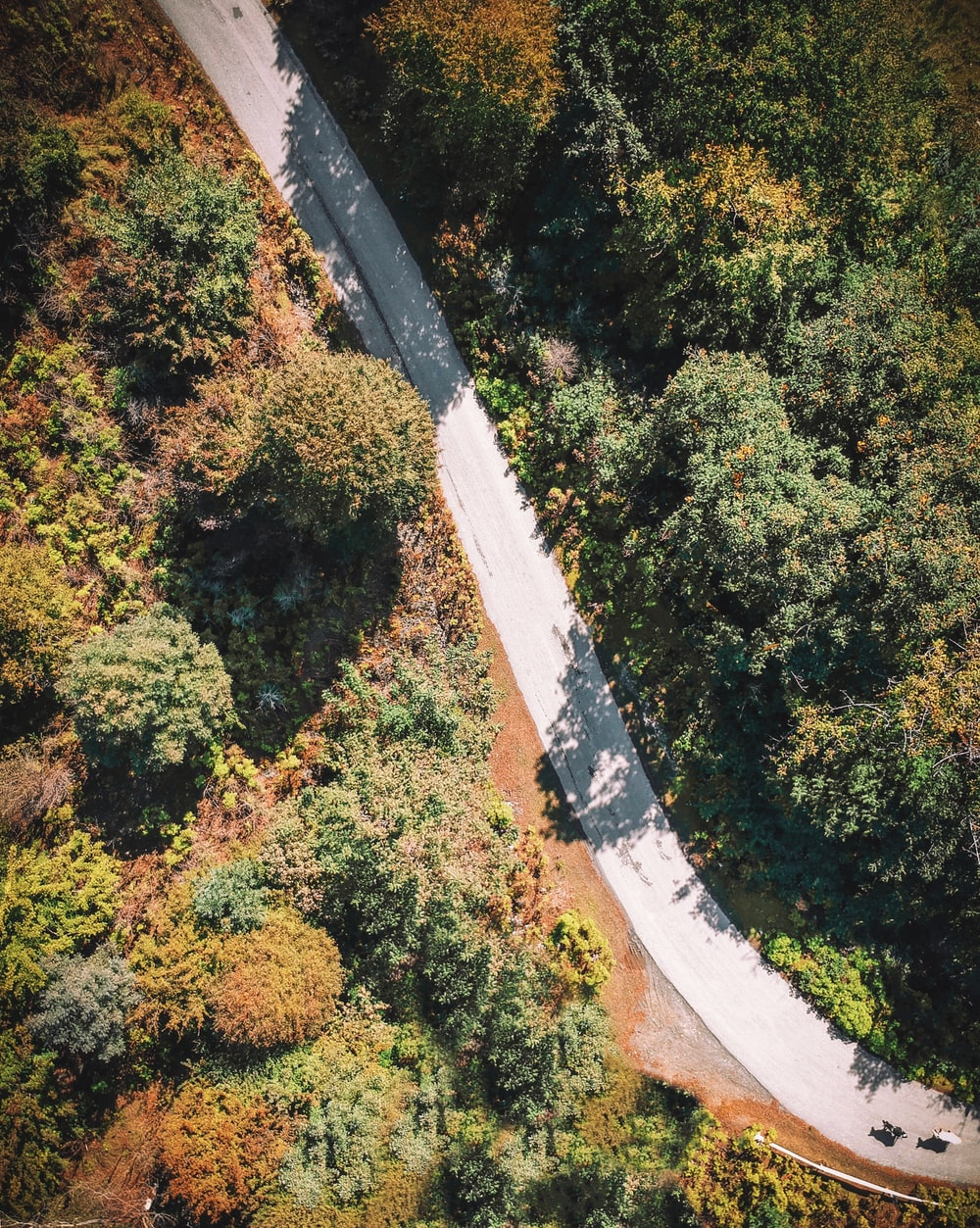 aerial photography of gray road path