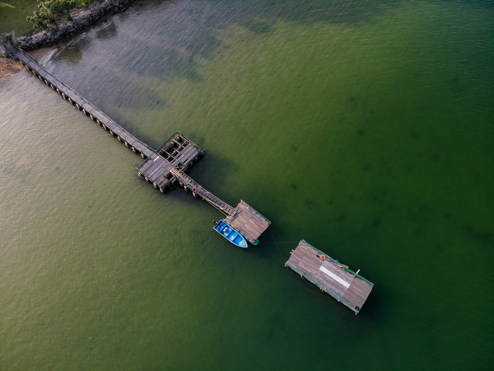aerial photography of blue speedboat near dock