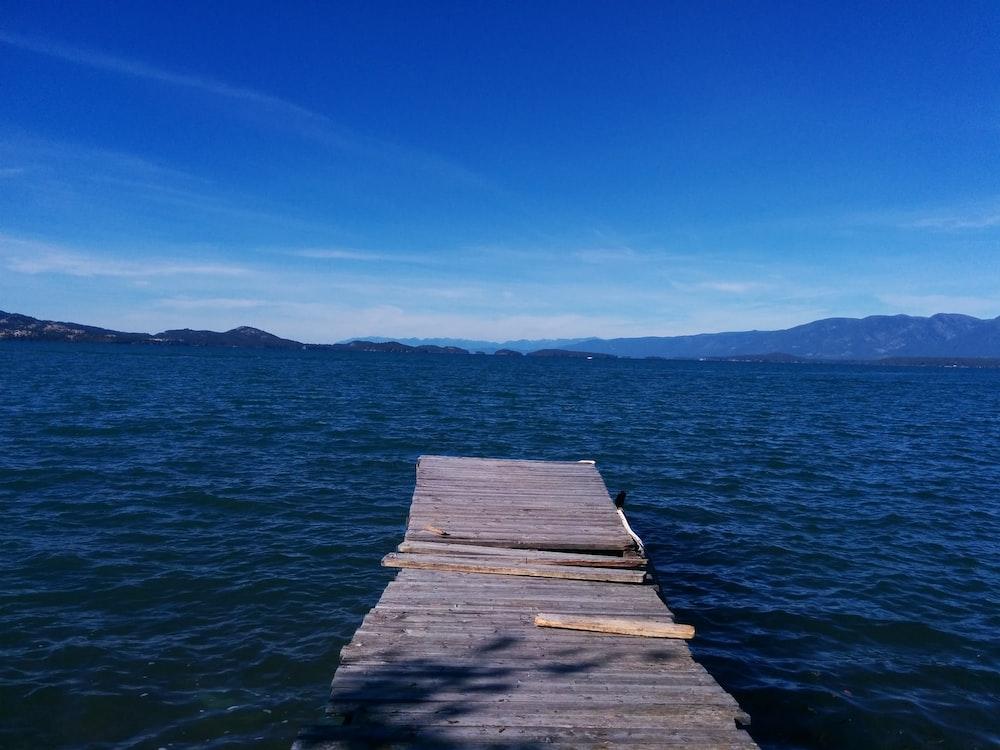 gray wooden dock