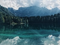 landscape photography of body of water near trees