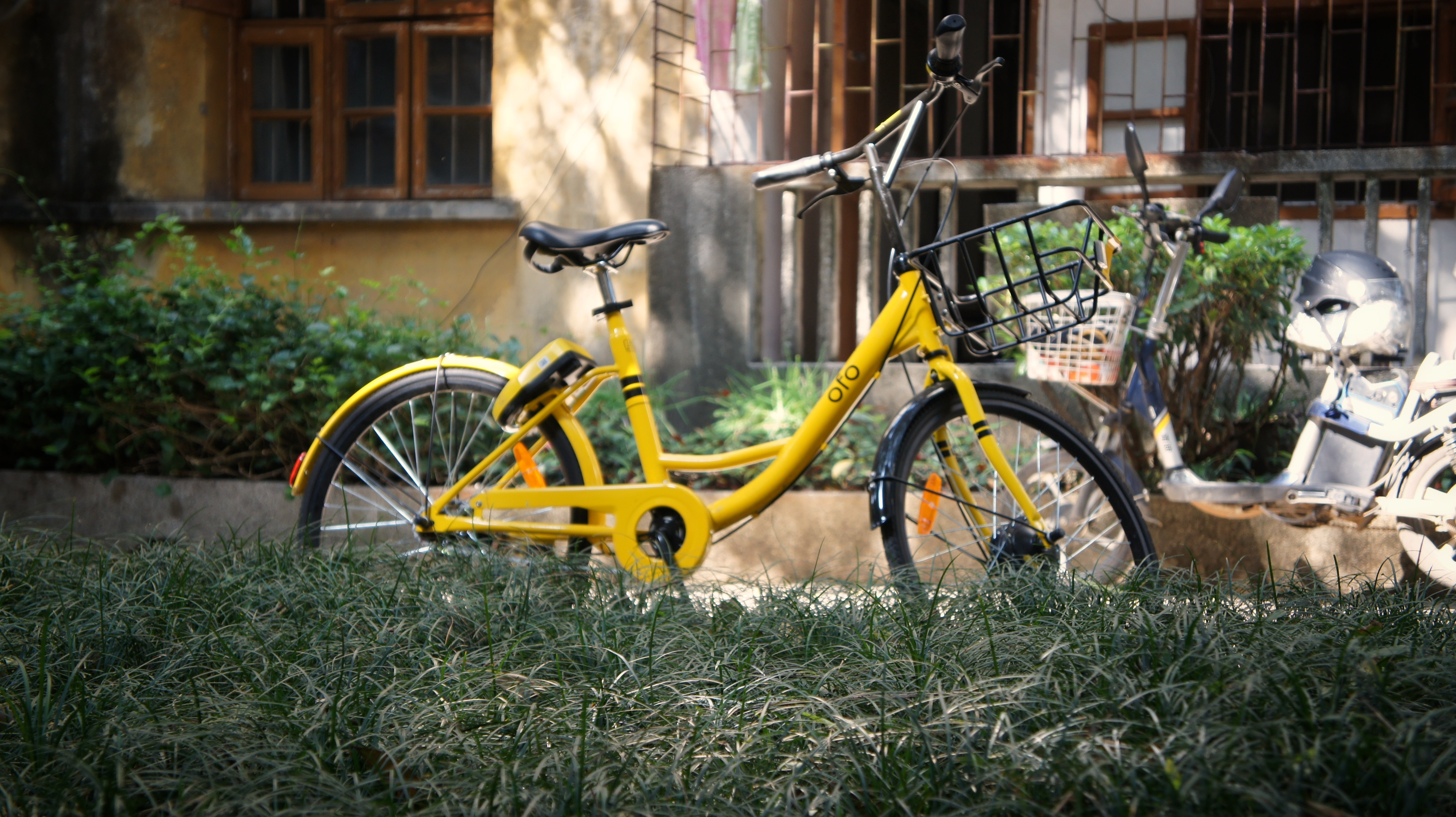 yellow city bicycle on grass during daytime