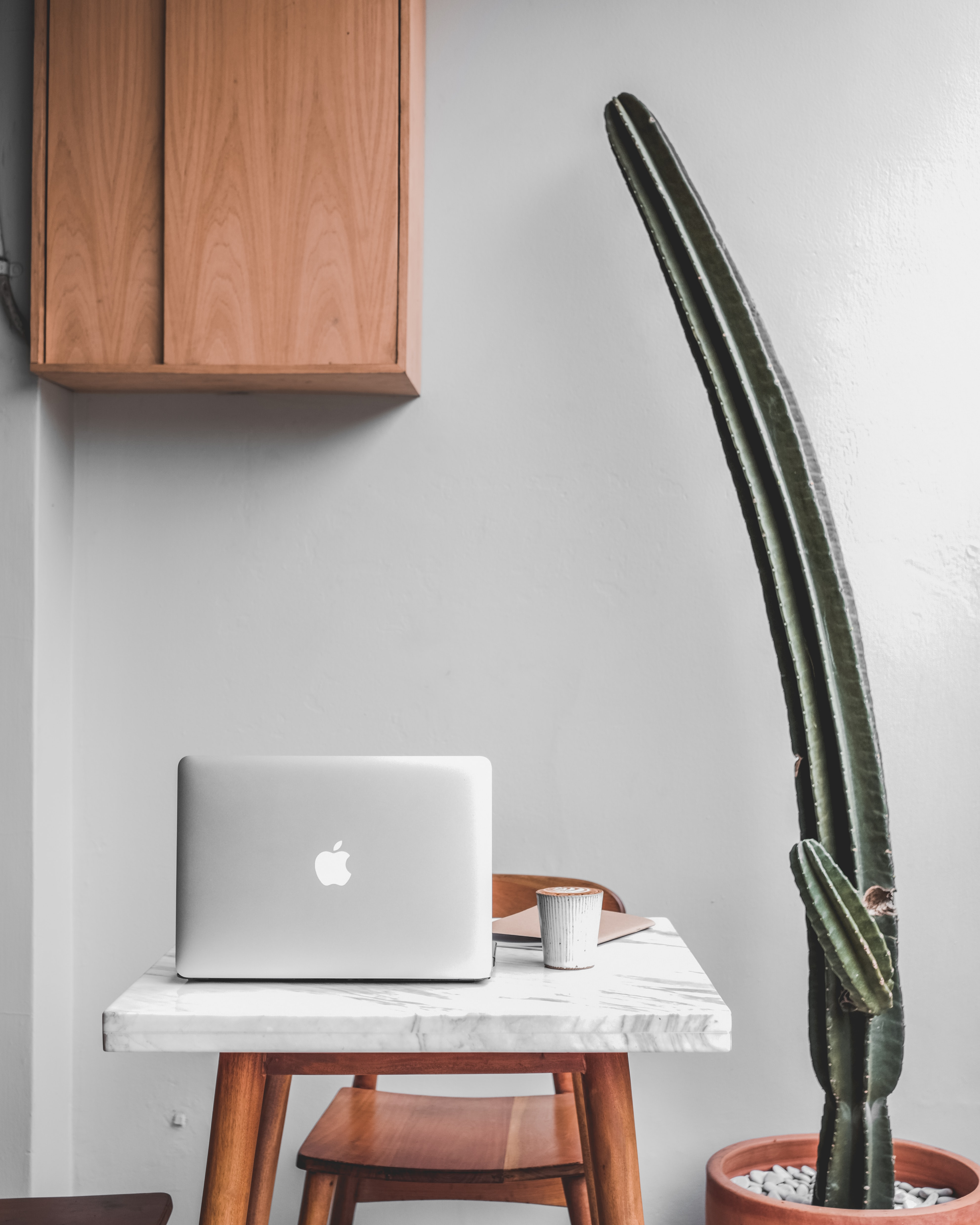 silver iMac on table beside green cactus plant