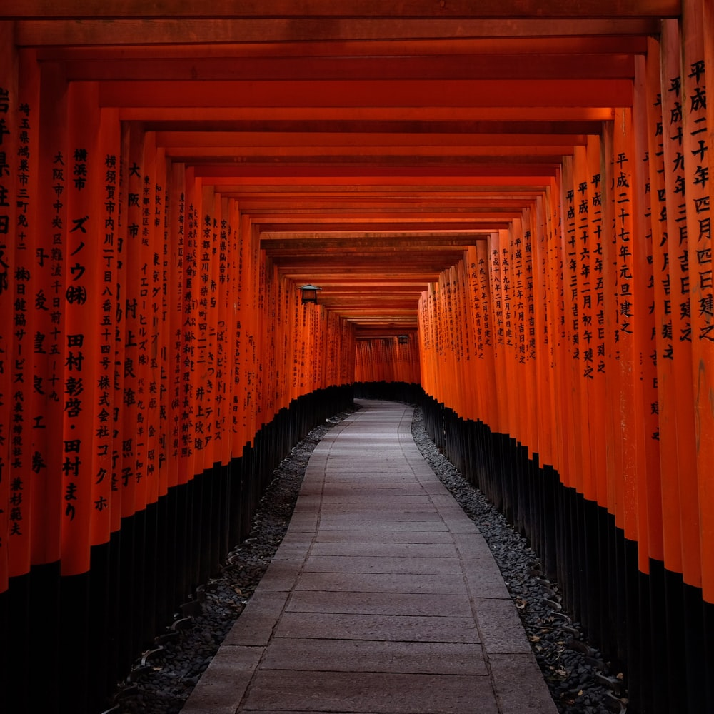 pathway under tori gates