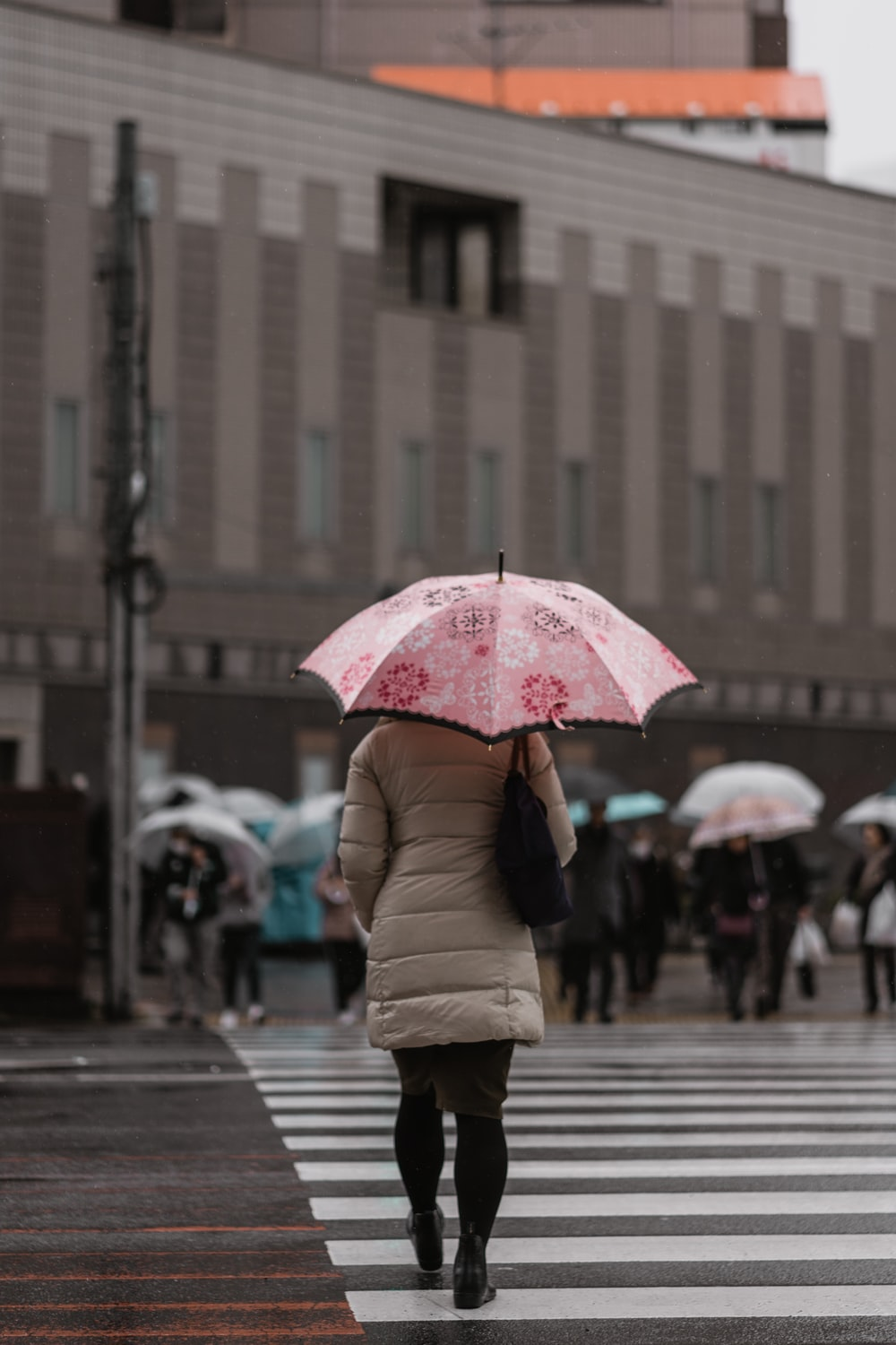 woman walking on pedestrian while holding umbrella