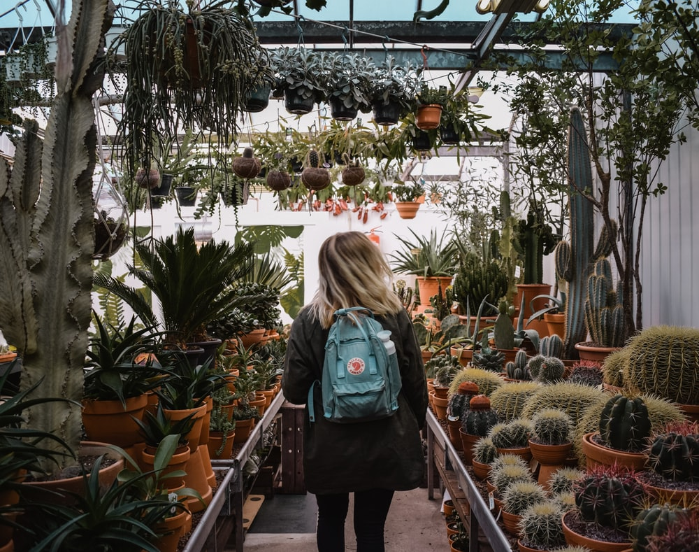 woman standing inside plant shop during daytime