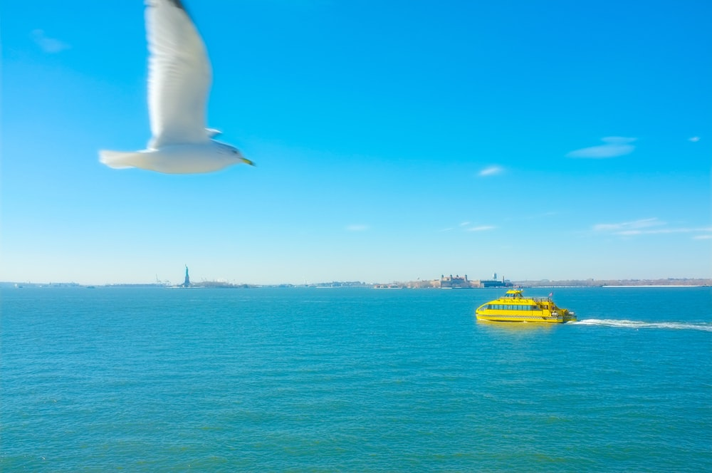 yellow cruiser boat on body of water