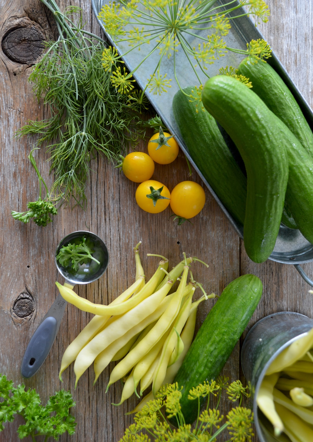 The Case for Avoiding Plant Foods —  Reckless or Beneficial?