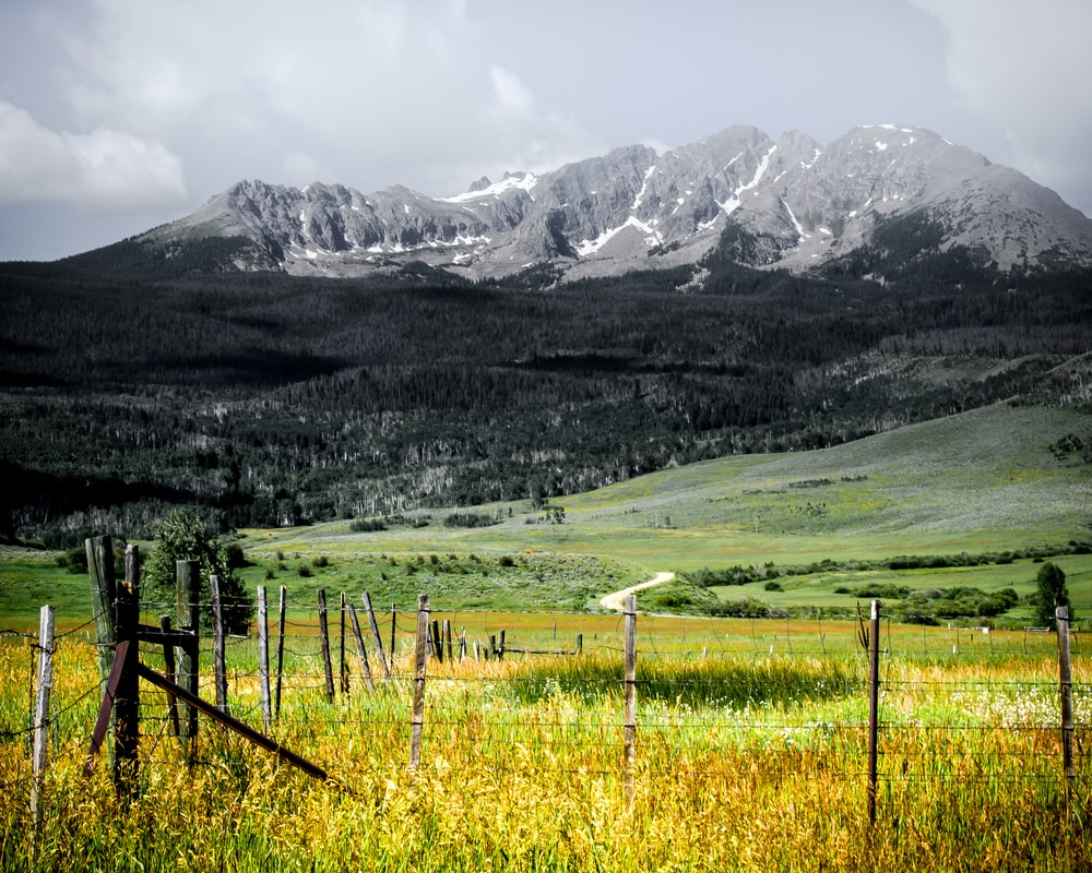 grass field near snow mountain