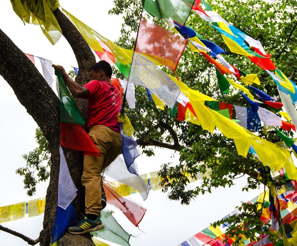 man climbing tree holding buntings