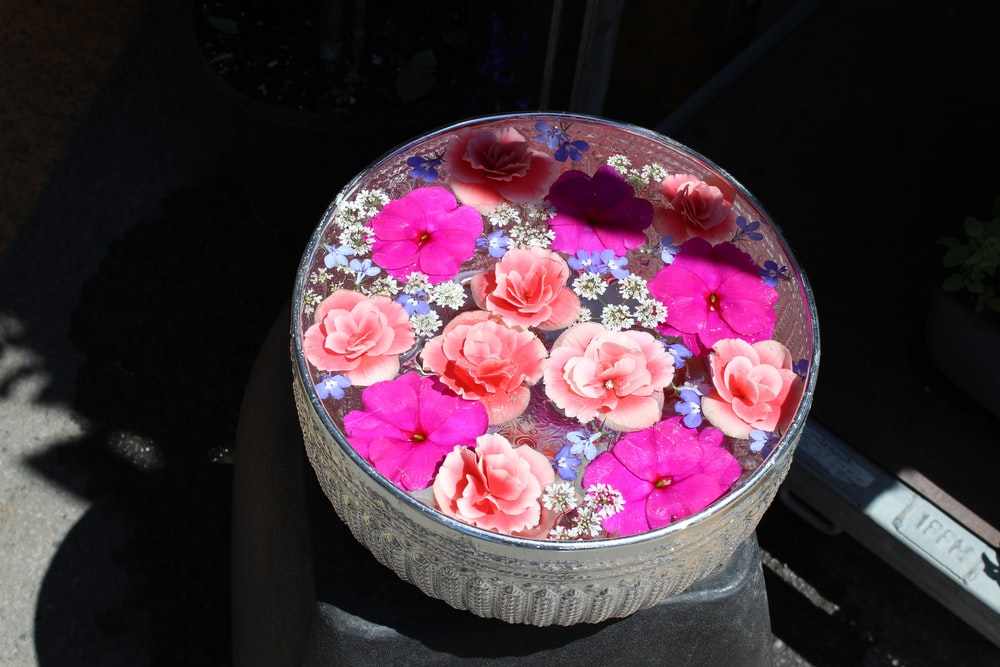 round pink flowers container