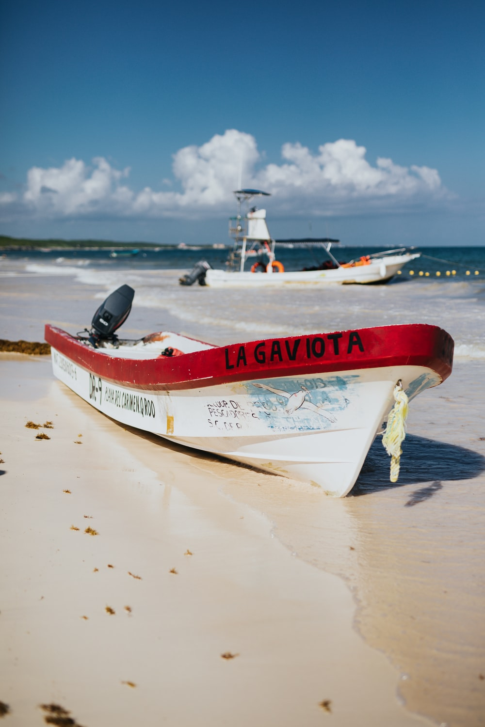 white and red speedboat on shore at daytime