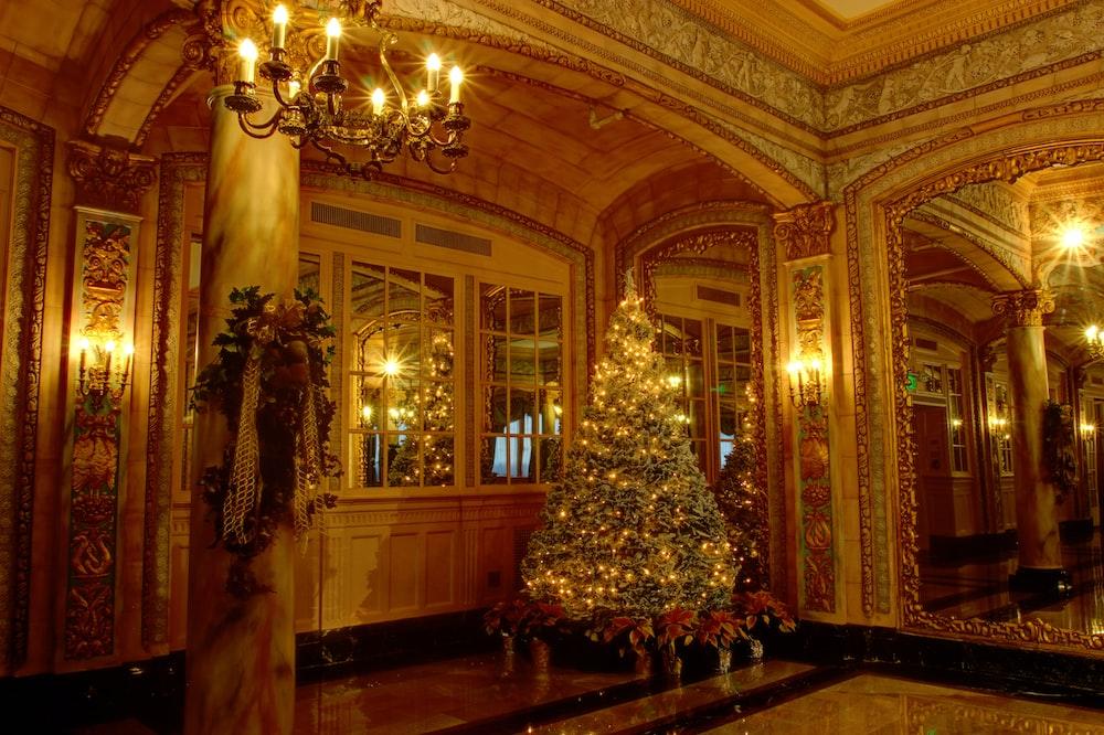 christmas tree with lights near windows