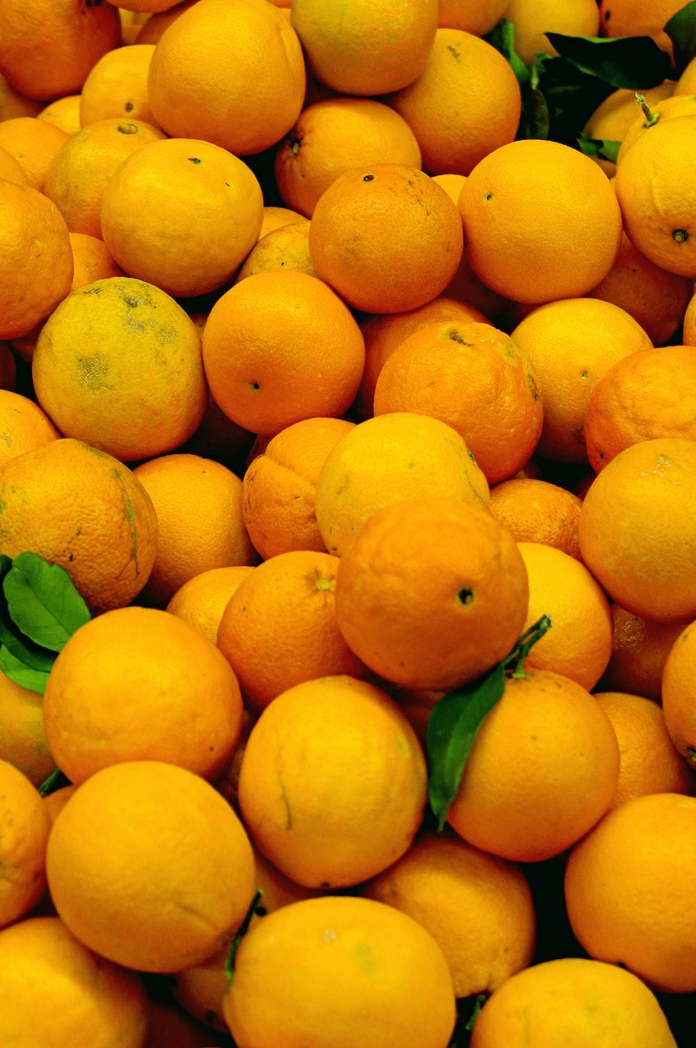 orange fruits on focus photography