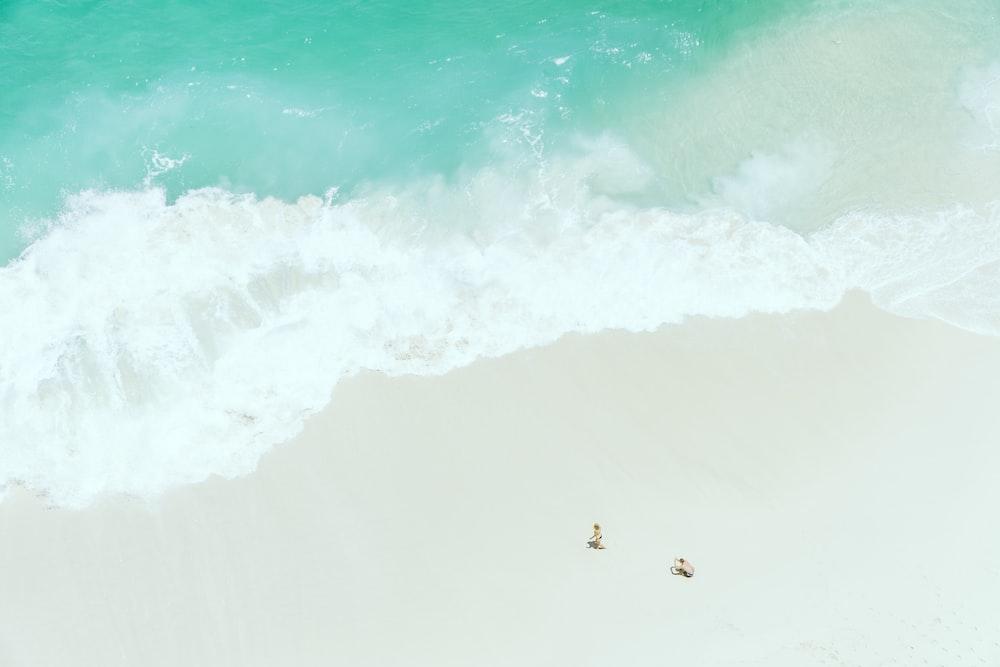 two people on sand near seashore