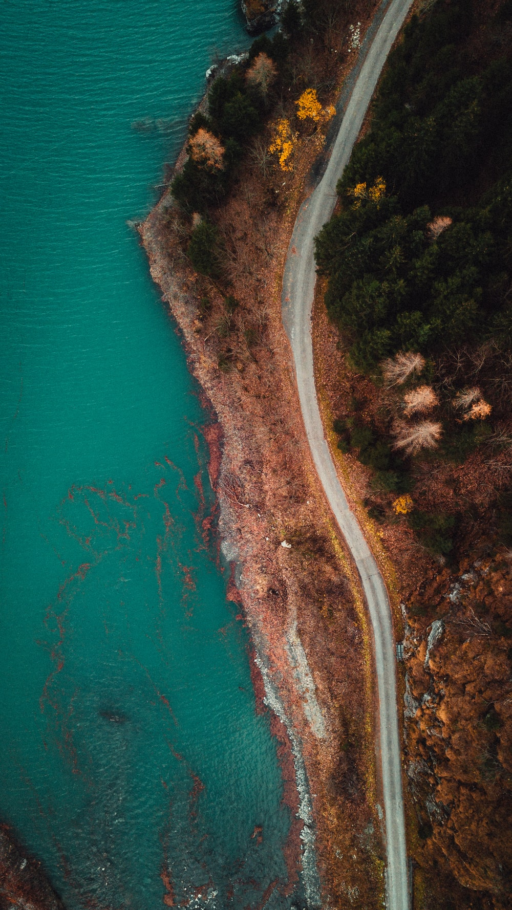 aerial photography of road near body of water