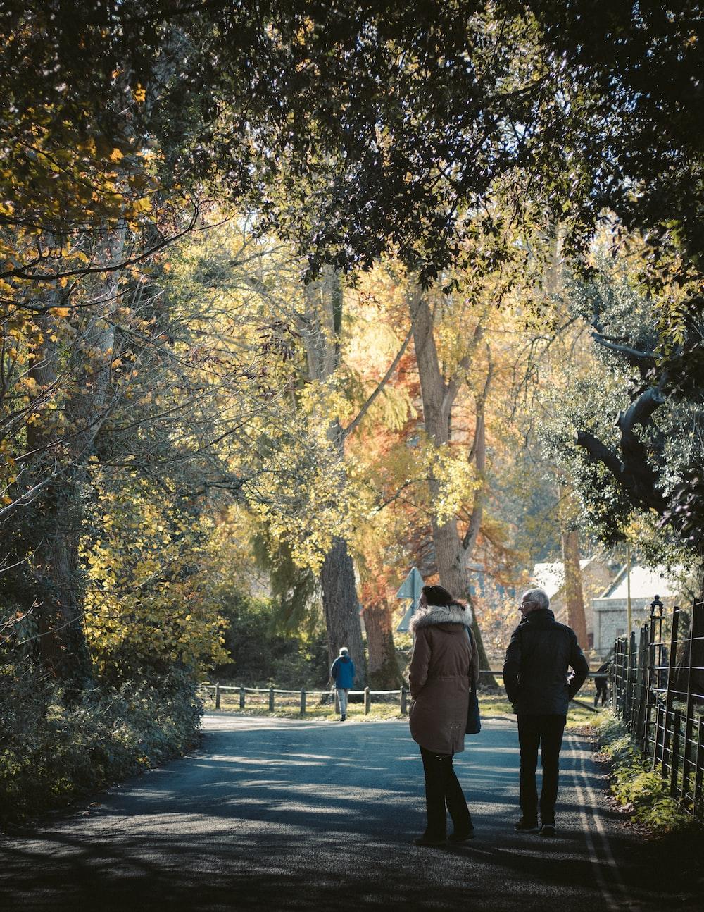 two women walking under green tree