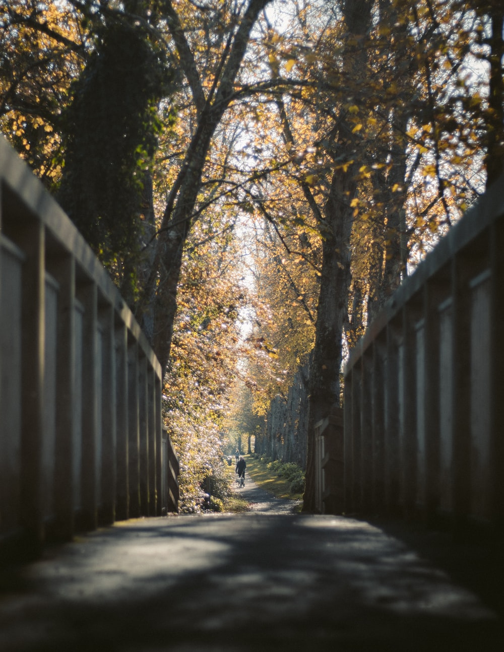 empty bridge during daytime