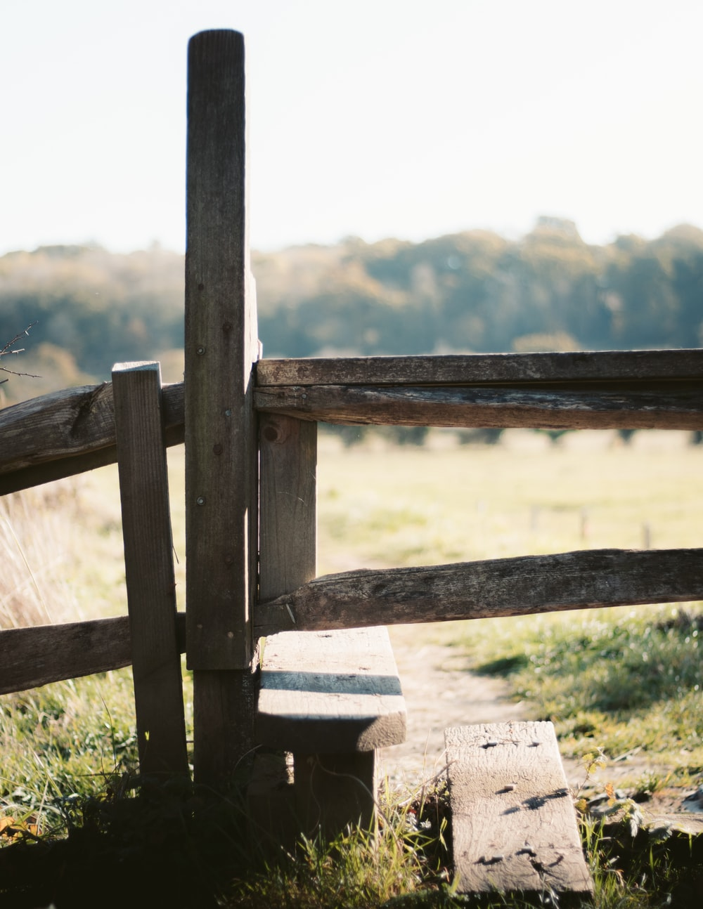 brown wooden fence during daytime