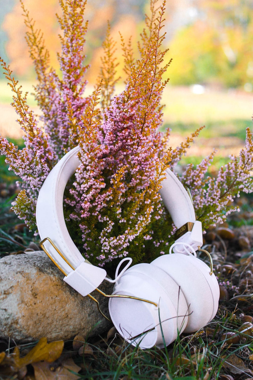 white cordless headphones near plant during daytime