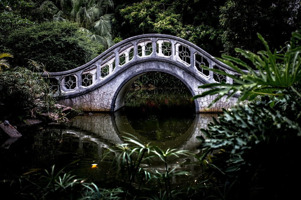 white bridge surrounded by trees