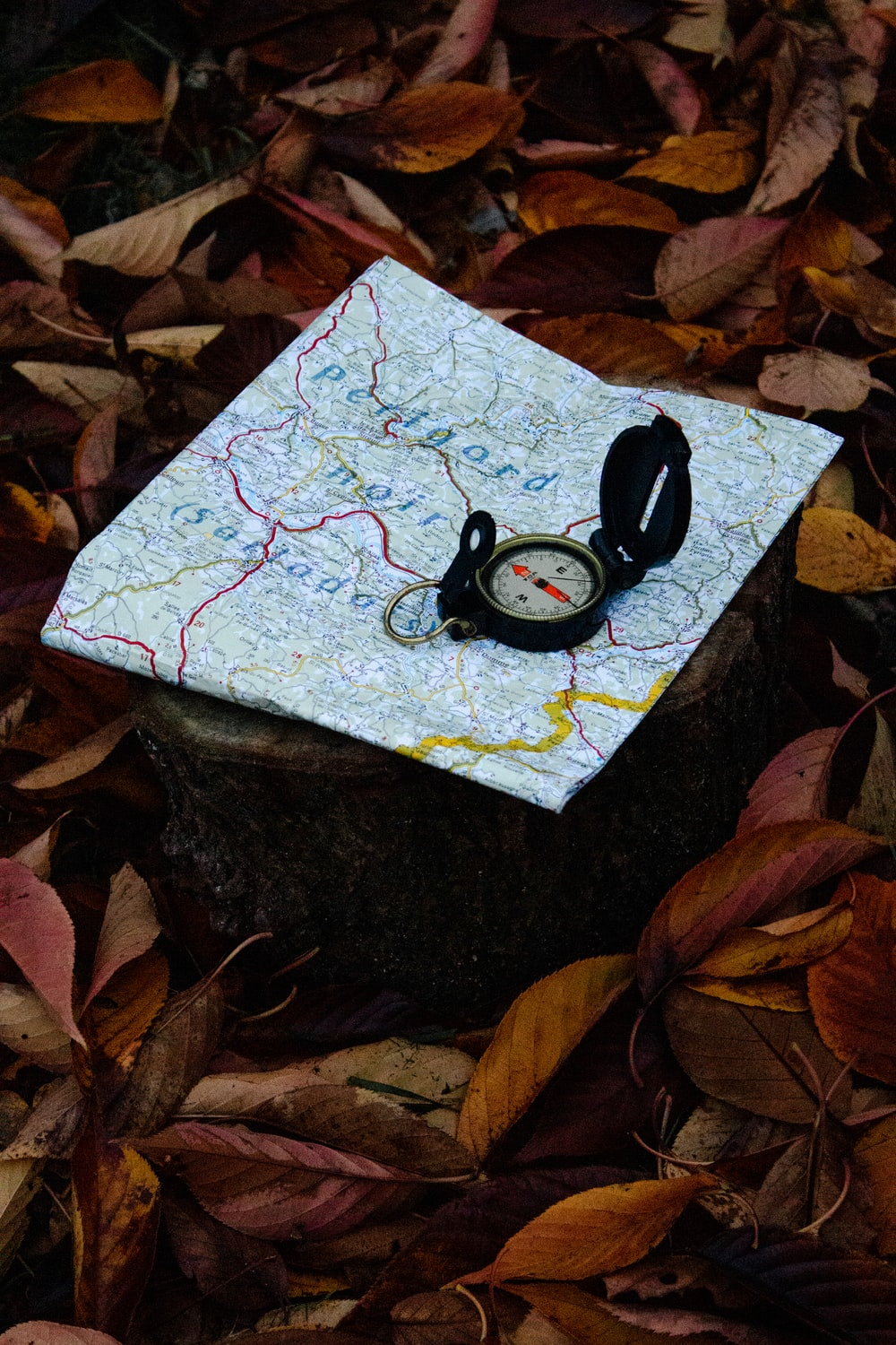 compass on white map surrounded dried leaves