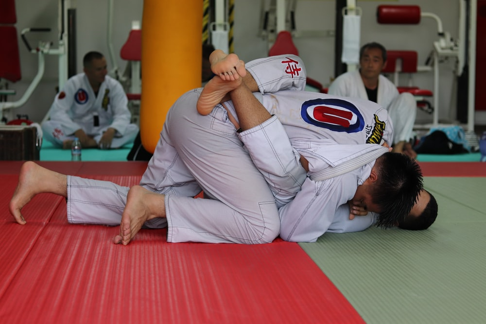 two person doing martial arts
