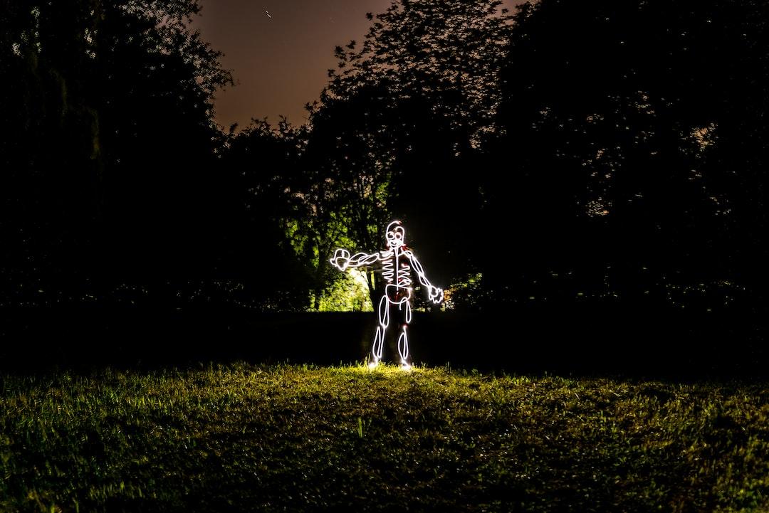 💡 The light skeleton