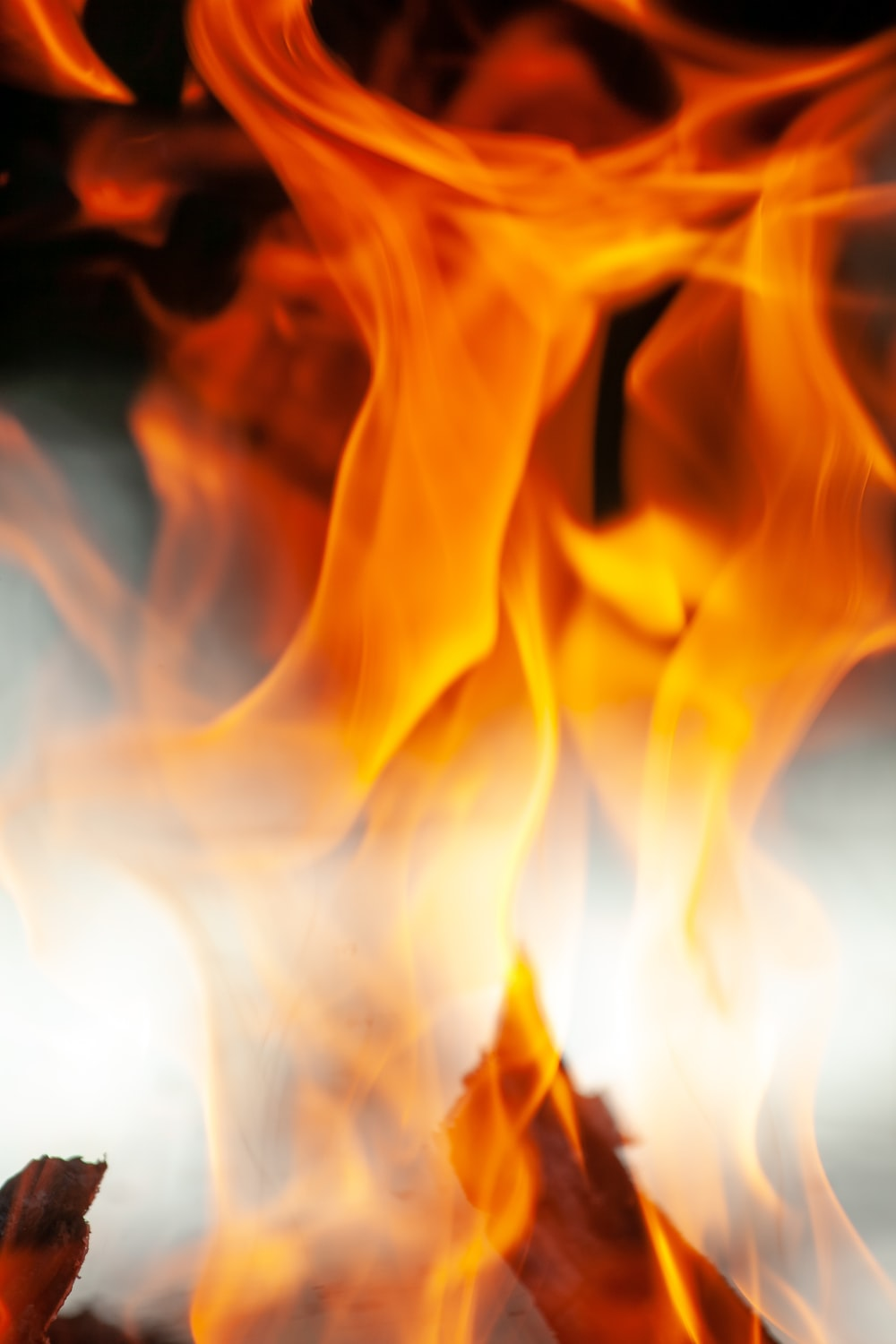 close-up of red flame