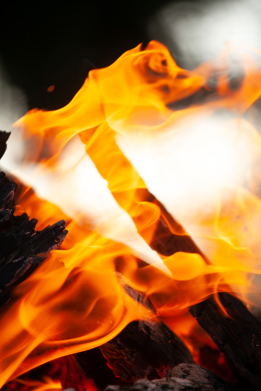 selective focus photography of red flame